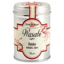WASABI D'HAKATA JAPON